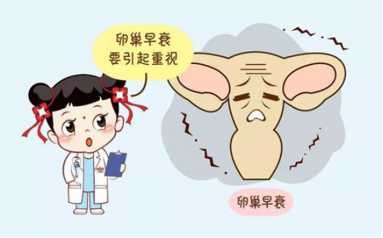 创生医联专家许朝钦研发PRP卵巢激活术
