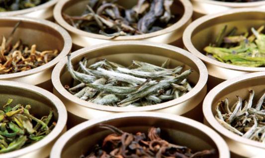 精品茶市场 雄起小罐茶