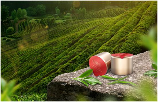 小罐茶迈开新步伐 标准化工业化建设独占鳌头